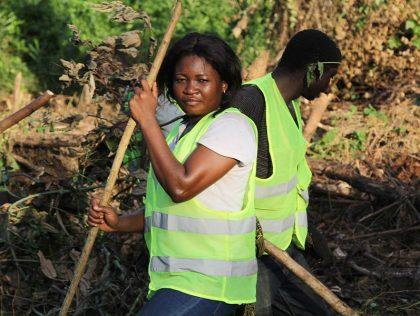 Entame du projet Reboisement, Agro-Foresterie